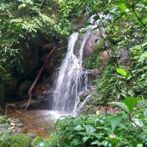 Trilha da Cachoeira Escondida em Paranapiacaba, Cachoeira Paranapiacaba, Paranapiacaba Cachoeiras, Paranapia, Olho Vivo Paranapiacaba