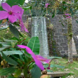 Núcleo Olho D'Água Paranapiacaba, Paranapiacaba Turismo, Paranapia, Parque das Nascentes em Paranapiacaba, Ecoturismo, Turismo Pedagógico, Olho Vivo Paranapiacaba