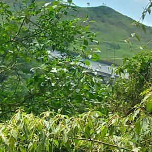 Trilha do Poço Formoso em Paranapiacaba, Trilha em Paranapiacaba, Poço Formoso, Paranapiacaba Turismo, Turismo Paranapiacaba, Paranapia, Olho Vivo Paranapiacaba